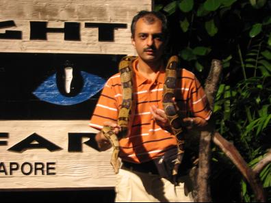 Amit - python